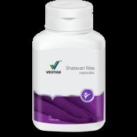 Vestige Shatavari Max