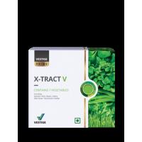 Vestige X-TRACT V